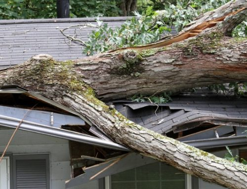 Wind Damage – What Can Wind Do To A Roof?